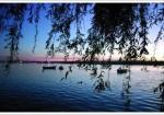 Ankara Morgan Gölü
