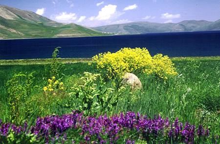 Ağrı Balık Gölü-11