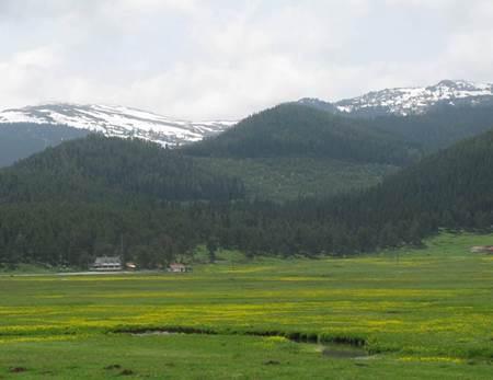 Bolu Sarıalan Yaylaları