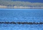 Bolu Seben Gölü