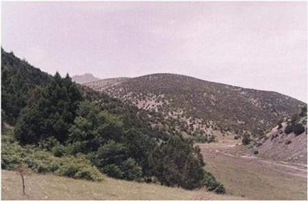 Afyonkarahisar Dandindere Tabiatı Koruma Alanı