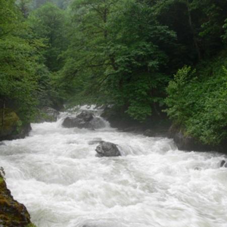 Artvin Doğla Güzellikleri - Maçahel-Gorgit-Efeler Tabiatı Koruma Alanları