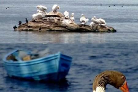 Aydın Bafa Gölü Tabiat Parkı-2