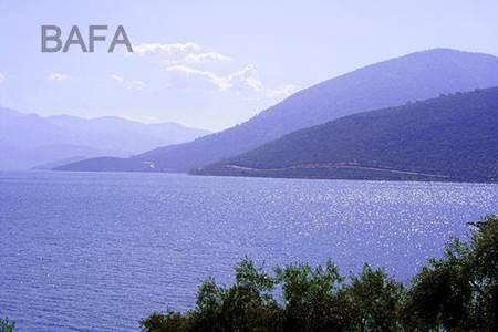 Aydın Bafa Gölü Tabiat Parkı-3