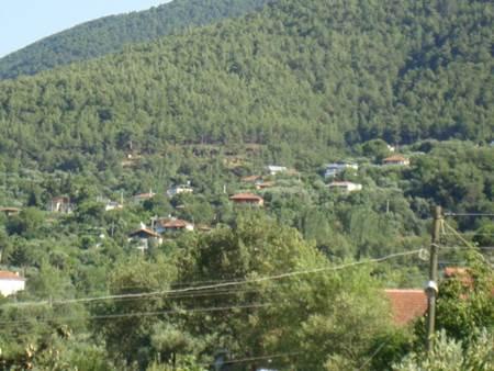 Aydın Karacasu Yaylası