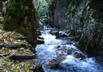 Balıkesir Doğal Güzellikleri - Kaz Dağı-1