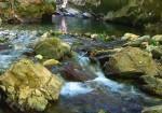 Balıkesir Doğal Güzellikleri - Kaz Dağı Milli Parkı