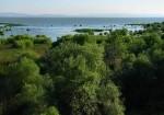 Balıkesir Doğal Güzellikleri - Kuş Cenneti Milli Parkı-1