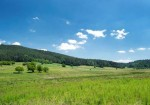 Bilecik Doğal Güzellikleri - Kamçı Yaylası