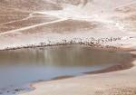 Nemrut Gölü-8