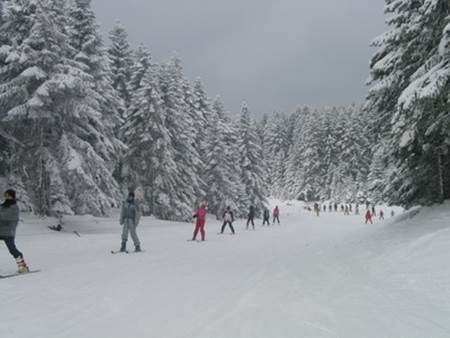 Arkut Dağı Kayak Merkezi
