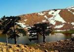 Beyağaç Kartal Gölü
