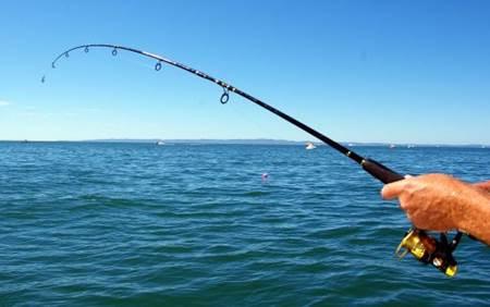 Avcılık ve Balıkçılık