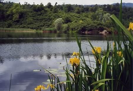 Gaga Gölü